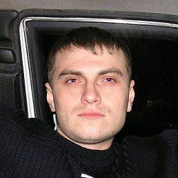 Александр, 40 лет, Елань
