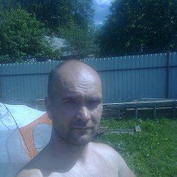 сергей, 41 год, Мга