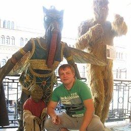 Макс, 26 лет, Бокситогорск
