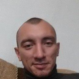 Андрей, 29 лет, Светловодск