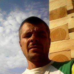 Александр, 40 лет, Любань