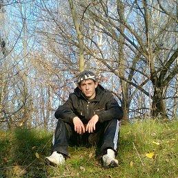 владимир, 28 лет, Апостолово