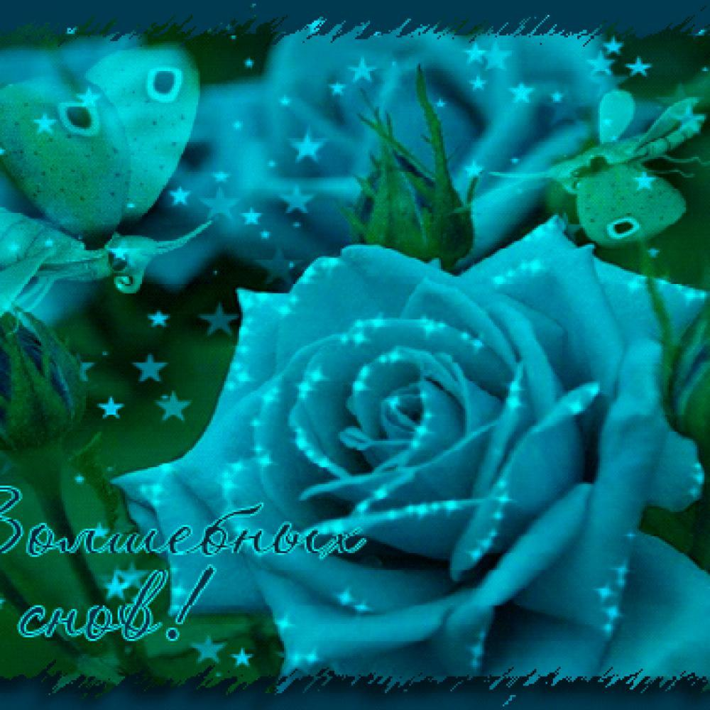 Открытки розы спокойной ночи, поздравлением ребенка месяца