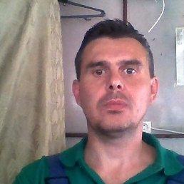 Андрей, 44 года, Ялта