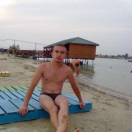 Стьопа, 28 лет, Стрый