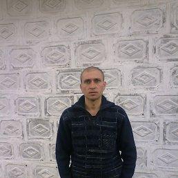 александр, 41 год, Петриковка