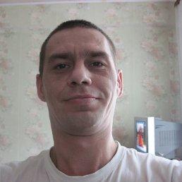 андрей, 39 лет, Дрезна