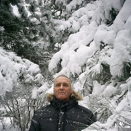 2012г.