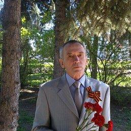 Лев, 67 лет, Нижний Новгород