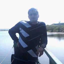 Сергей, 29 лет, Селидово