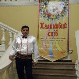 владимир, 63 года, Новомиргород
