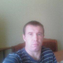 Алексей, 38 лет, Калашниково