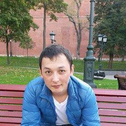 Максим, 24 года, Иванова
