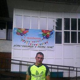 Александр, 35 лет, Дубна