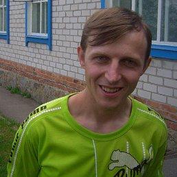 Володимир, 39 лет, Хорол
