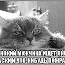 Фото Алексей, Севастополь, 41 год - добавлено 23 ноября 2015