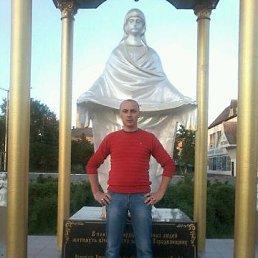 Андрей, 34 года, Городня