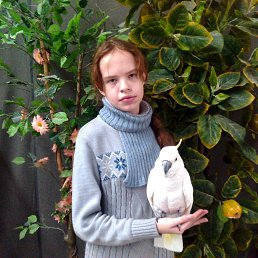 Вероника, 16 лет, Унеча