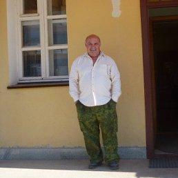 ВИКТОР, 66 лет, Дорогобуж