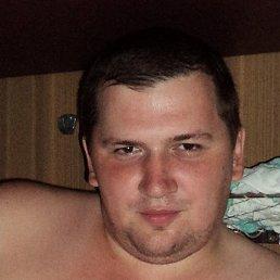 Александр, 35 лет, Шишкин Лес