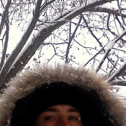 Александр, 29 лет, Камень-на-Оби