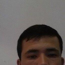 Тимур, 24 года, Королев