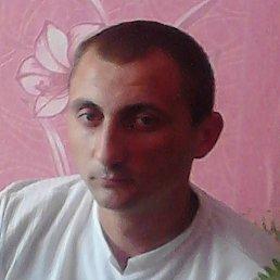Владимир, 34 года, Белополье