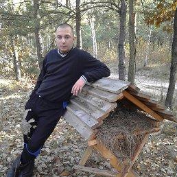 Анатолий, 32 года, Фастов