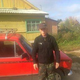 Сергей, 64 года, Буй