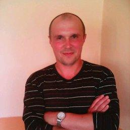 Юрий, 45 лет, Кировск