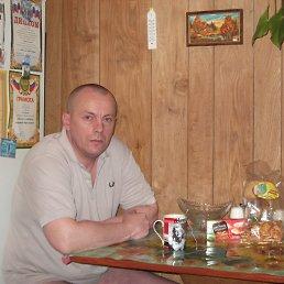 Стас, 44 года, Сольцы