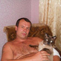 Юрий, 55 лет, Белозерское