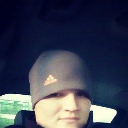 Александр, 25 лет, Пестово