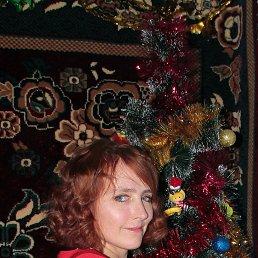 Наташа, 41 год, Краснодар