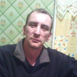 Роман, 43 года, Тосно