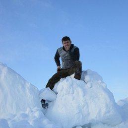 влодимир, 26 лет, Рожнятов