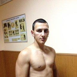 Миша, 28 лет, Кириши