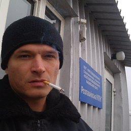 Александр, 40 лет, Абазовка
