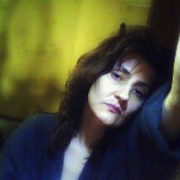 Мадам, 49 лет, Люберцы
