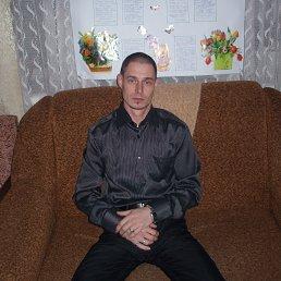 Дима, 36 лет, Таврийск