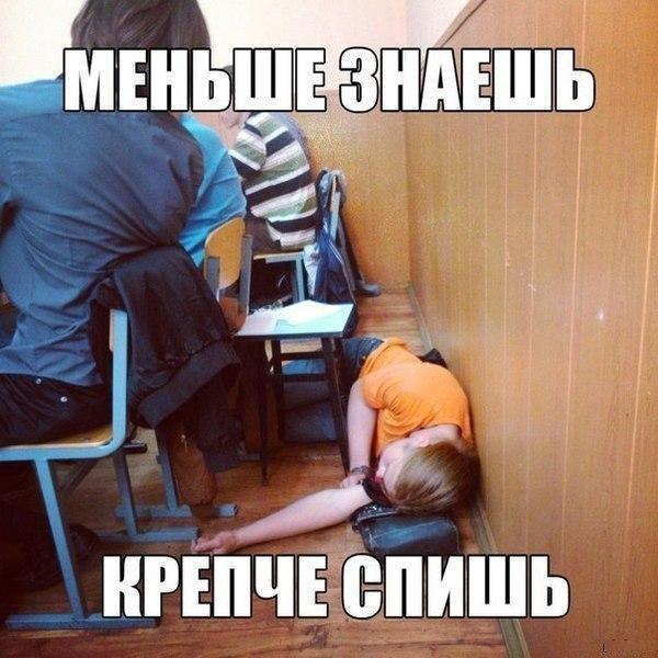 Создать, смешные фото с надписями до слез про школу
