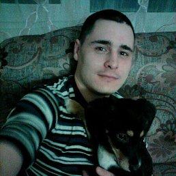 Антон, 28 лет, Архангел
