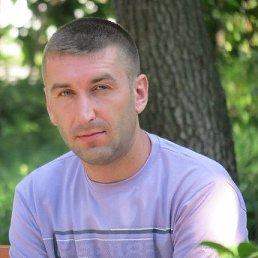 юра, 36 лет, Красилов