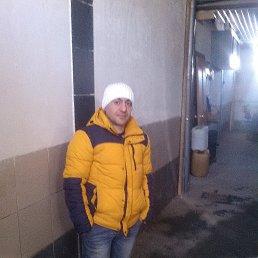 артура, 39 лет, Новосибирск
