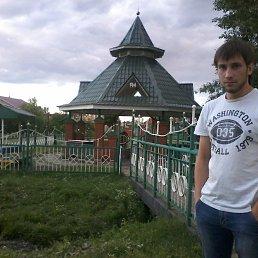 Ильмир, 28 лет, Черемшан