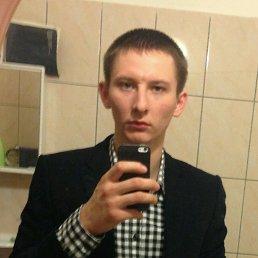 Михаил, 29 лет, Юбилейный