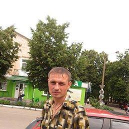 владимир, 33 года, Новгород-Северский