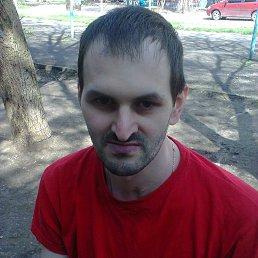 Ігор, 33 года, Белая Церковь