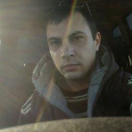 Михаил, 29 лет, Котово
