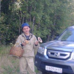 как-то, 38 лет, Жуковский